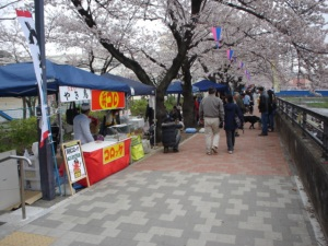 Food vendors under the cherry blossoms